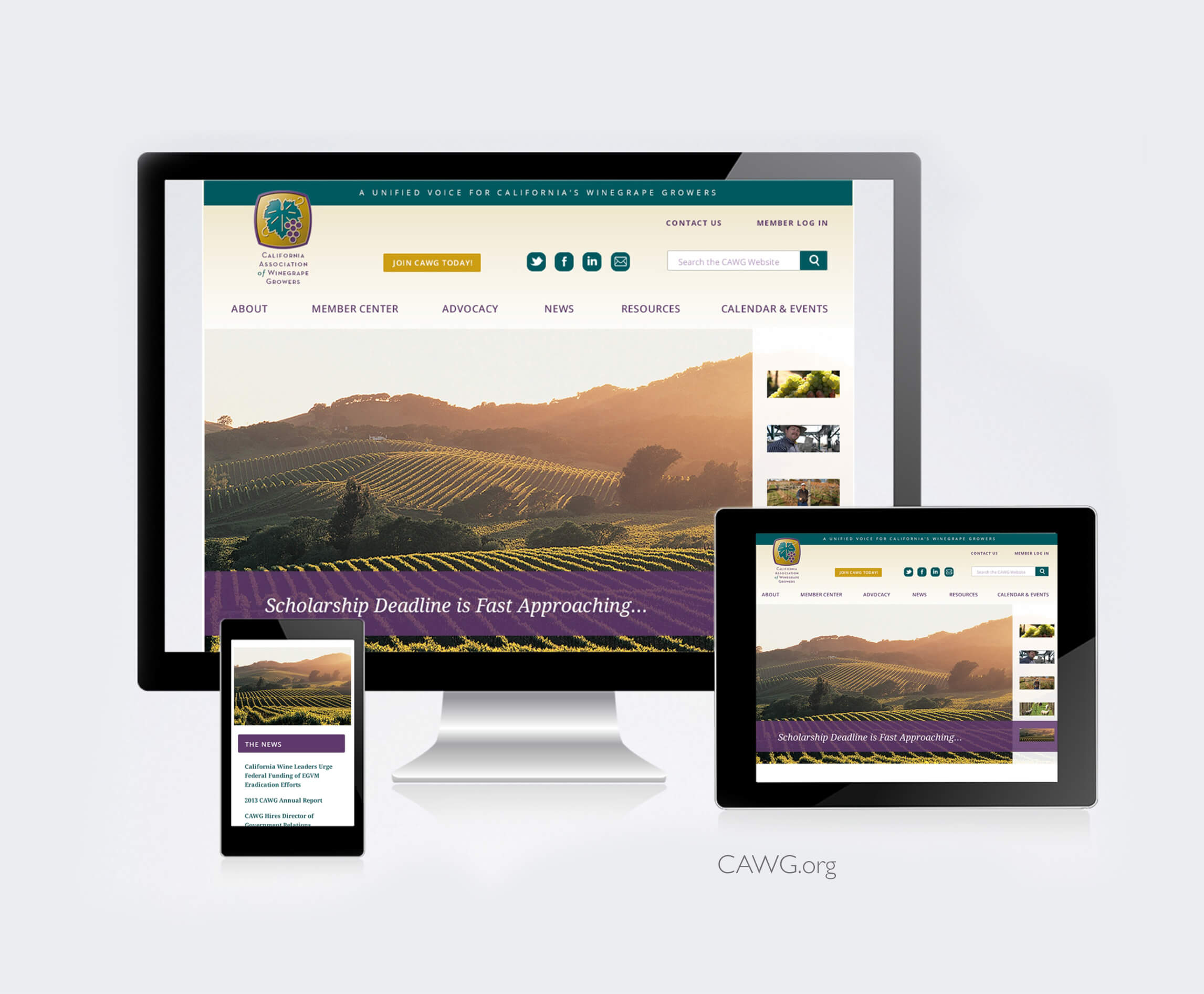CAWG_Interactive-Web